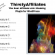 How I gained tremendous clicks by using Thirsty Affiliates