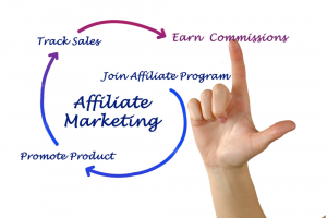 Not seeing affiliate income?